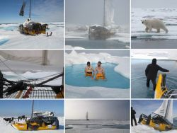 They stayed only 13 days on the Arctic Ocean
