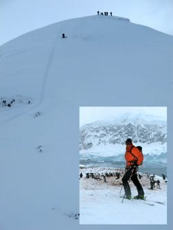 Visiting the remote islands of the Antarctic Peninsula