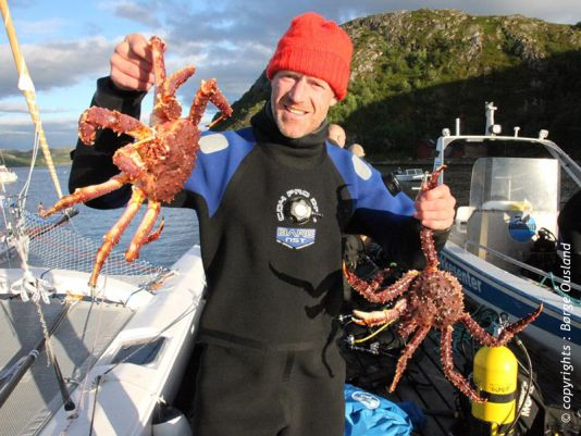 17 July / Catch of the day – tasty red king crab. There's plenty of them off the coast of Finnmark!