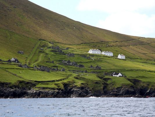 Some modern houses amongst the Great Blasket