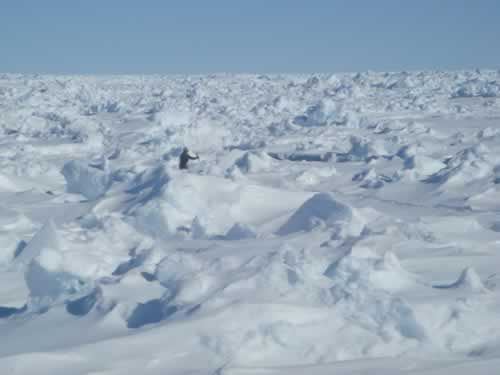 11 June: We're getting lost among the ice: Looking for the 'beast'!!!