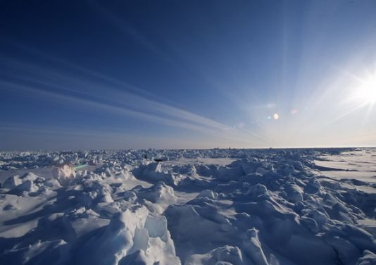 Who said the Arctic sea ice was flat?