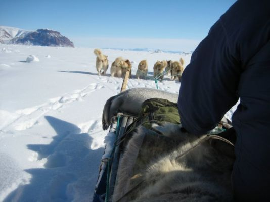 They were accompanied by two Inuit guides and huskies accompanying them up the glacier.