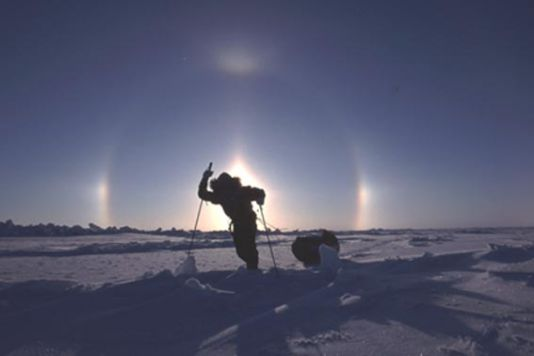 Here an spectacular phenomenon of refraction and reflection of the solar rays by crystals of ice suspended in the atmosphere, which appears especially in the Polar Regions: the